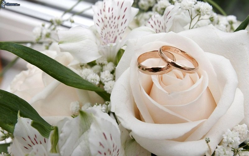 Sala weselna idealna dla Ciebie i Twoich gości – jak znaleźć miejsce na niezapomnianą uroczystość? Podpowiadamy, czym kierować się przy wyborze sali na wesele